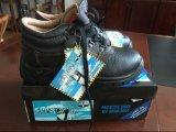 Hot vender más barato de Stock Zapatos 499