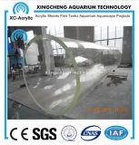 Het grote Project van de Tank van de Vissen van het Aquarium van Vissen