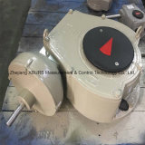 벨브를 위한 Xhw87pg10 벌레 변속기