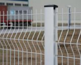 Загородка покрынная Galvanized/PVC сваренная для предохранения от безопасности