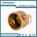 Standard arm cd. Camwood Lock Fitting/Hose Fittings Camlock Coupling
