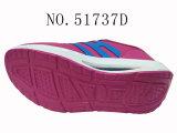 Nr 51737 Schoenen van de Gezondheid van de Schoenen van de Schoenen van het Platform van Vier Vrouwen van Kleuren de Toevallige