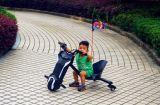Bicicleta eléctrica de las ruedas de China 100W tres para los niños (JY-ES002)