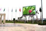 Étalage polychrome de la publicité extérieure de P12.5 DEL