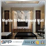 Azulejo de mármore natural Parede de parede de fundo de TV / Padrão / Mosaico / Pedra de escultura