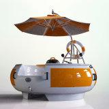 Bbq-Miniboot mit Sonnenschutz auf die Oberseite