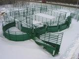 최신 복각 호주 시장을%s 직류 전기를 통한 가축 야드 담 위원회
