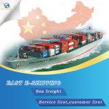 Service de livraison rapide de Shenzhen à travers le monde par fret maritime