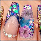 Pigmento brilhante dos Glitters da decoração do prego do brilho para Halloween