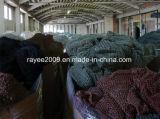La pesca professionale lavora la rete da pesca del cotone di nylon, collegare della rete da pesca
