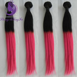 #1b/Pink Ombre 색깔 인간적인 Remy 머리 씨실 (HW50)