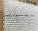 Ячеистые ядра PP полипропилена для панелей сота PP стеклоткани