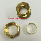 Encaixe de bronze da compressão da linha do NPT do material do cobre da profissão de China