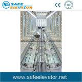 박판으로 만들어진 유리 관광 전송자 엘리베이터