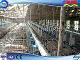 2016 высшего качества на заводе прямые поставки экономики крупного рогатого скота (FLM-CP-021)