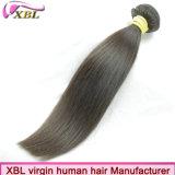 自由な出荷の卸売のバージンのブラジルのRemyの人間の毛髪