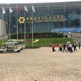 Polonês Vibratory portátil do modelo novo de China