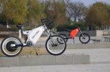 precio eléctrico 2018 de la bici de Enduro de la potencia verde de 72V 8000W