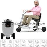 250W350W 500W Hub Motor Electric Tricycle 3 Wheel Electric Scooter