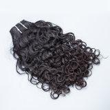 100% необработанных заготовок волос Малайзии 100% нового малайзийской Реми волос