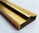 6061/6063 profil anodisé par or expulsé d'aluminium/en aluminium d'alliage