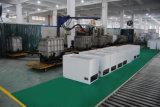Congelatore di raffreddamento della cassa del grande compressore economizzatore d'energia di formato