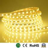 Tira de LEDS de luz de la decoración de Navidad
