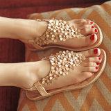 Лето сандалий Beachwear женщин способа сандалий женщин плоское обувает сандалии повелительниц