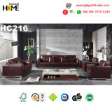 Hot-Selling Italy Leather Living Room Sectional Sofa (HC216)