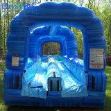 大人および子供のための巨大で膨脹可能な二重車線水スライド