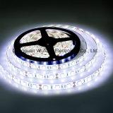 UL 훈장 60LEDs 5050 유연한 LED 지구