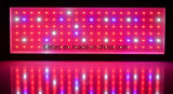 El LED crece Growing floreciente ligero de la planta de invernadero
