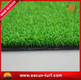 Tenis de Hierba Counrt Indoor Golf Putting Green forma China
