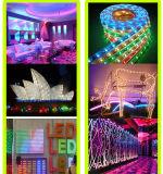 Luz de tira de la alta calidad LED de China