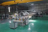 Vente directe d'usine lucarne de polycarbonate de 2mm à de 5mm