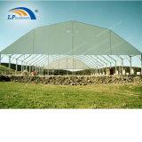 Aluminium de haute qualité polygonale de renom grande tente de sports pour l'événement