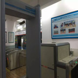 Bagagem de raios X Dispositivo de inspeção de segurança do scanner para a estação