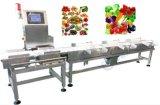 in Ce van de Fabrikant van de Weger van de Chocolade van de Motie, ISO, SGS