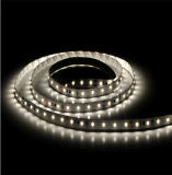 SMD 3528 flexibles helles Gefäß des Weiß-Farbstreifen-LED