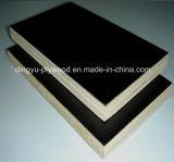 Película Negra enfrenta la madera contrachapada con precios más bajos