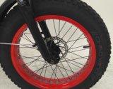 20 بوصة يطوي سمين [إ] درّاجة