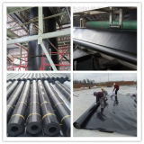 Geomembrane reforzado con la superficie lisa y Textured
