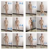 Mannequin femminile del Pieno-Corpo poco costoso di Hotsale con di vetro/di base metallica