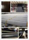 0.5mm HDPE mit hoher Schreibdichtepolyäthylen Geomembrane für Garnele-Teich
