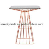 Table de barres en acier inoxydable