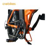 Neue Entwurfs-Qualitäts-elektrisches fettes Gummireifen-Fahrrad für Verkauf