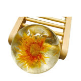 80g planta transparente Redondo Chrysanthemum Essência Aminoácido Bsj-Ajs Soap-8