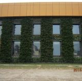 Jardin Vertical mur (UN-W3320)