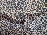 Impressão de leopardo Super Macio (HZS veludo--00325)