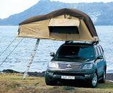 Doppelte Dach-Oberseite-Zelte/Dach-Zelte/Dach-Spitzenzelte